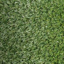 Искусственная трава Ideal Erba, 2м Нарезка